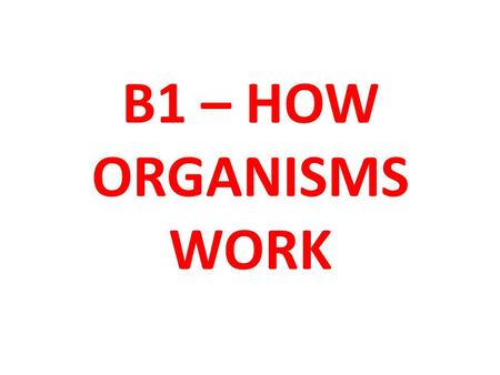 B1 – HOW ORGANISMS WORK. Learning Objective To be able to explain how diet and exercise effect the human body Key words: Carbohydrates, Sugars, Fats,