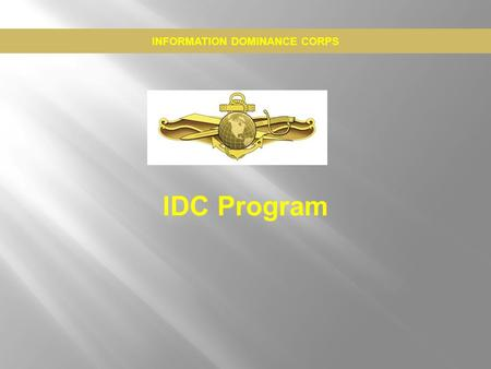 information dominance warfare officer