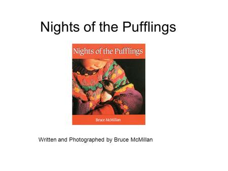 Nights of the Pufflings Written and Photographed by Bruce McMillan.