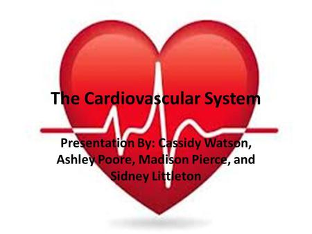The Cardiovascular System Presentation By: Cassidy Watson, Ashley Poore, Madison Pierce, and Sidney Littleton.