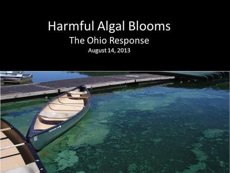 Harmful Algal Blooms The Ohio Response August 14, 2013.