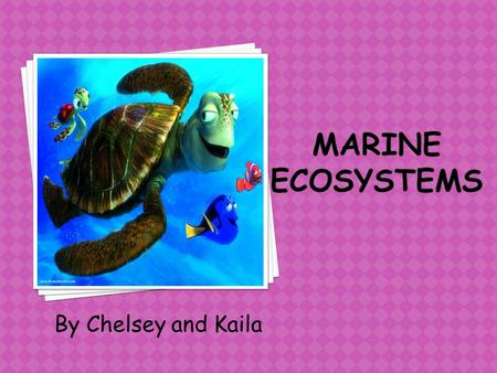 By Chelsey and Kaila. Marine ecosystems includes: 1.Intertidal zone: Sandy beaches, rocks, estuaries, mangrove swamps and coral reefs. Many of the species.