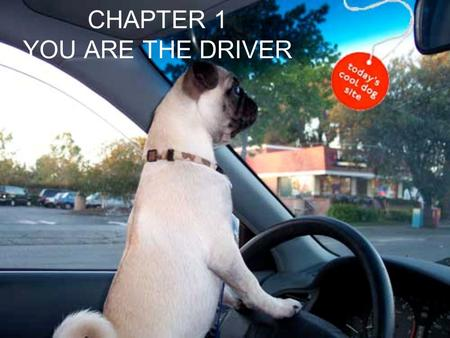 CHAPTER 1 YOU ARE THE DRIVER