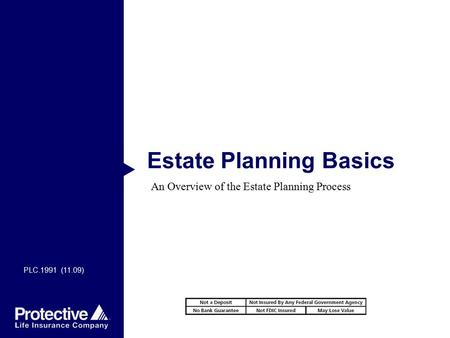 Estate Planning Basics An Overview of the Estate Planning Process PLC.1991 (11.09)