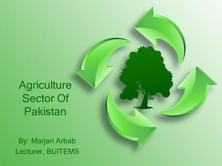 Agriculture Sector Of Pakistan By: Marjan Arbab Lecturer, BUITEMS.