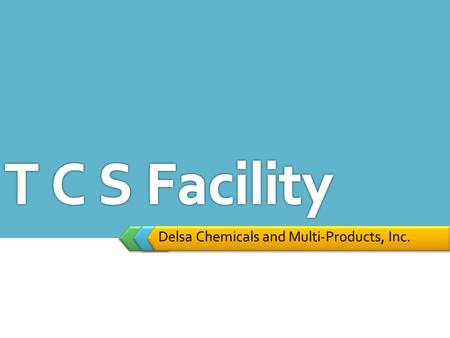 Delsa Chemicals and Multi-Products, Inc.. Qualification set by the World Bank to operate TCS facility  Should be in related business (Collection, transport.