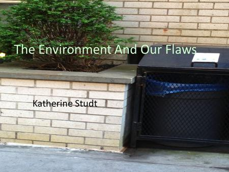 The Environment And Our Flaws Katherine Studt. THE THINGS WE TAKE ADVANTAGE OF WATER PAPER ENERGY Paper products are made of trees that keep us alive.