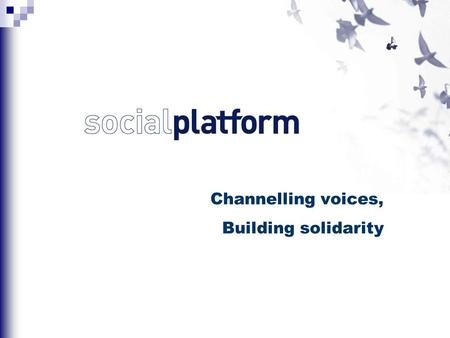 Channelling voices, Building solidarity. The Platform of European Social NGOs (Social Platform) is the alliance of representative European federations.