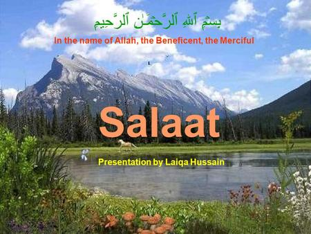 Salaat بِسۡمِ ٱللهِ ٱلرَّحۡمَـٰنِ ٱلرَّحِيمِ In the name of Allah, the Beneficent, the Merciful Presentation by Laiqa Hussain.