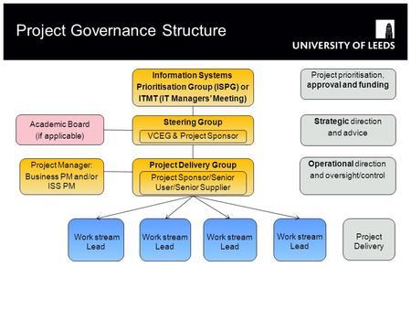 Project Governance Structure