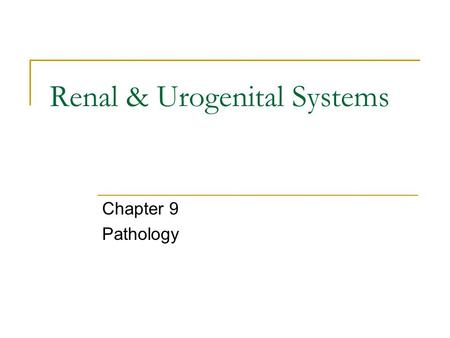 Renal & Urogenital Systems