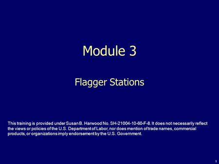 Module 3 Flagger Stations