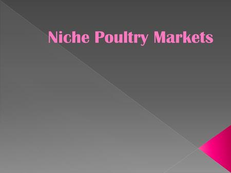 Niche Poultry Markets.  Live Bird Markets  Squab Production  Duck Production  Upland Game Birds Niche Poultry Markets.