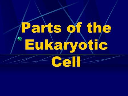 Parts of the Eukaryotic Cell Cell Membrane Selectively Permeable = only certain things can enter / exit the cell.