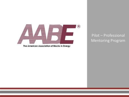 Pilot – Professional Mentoring Program The American Association of Blacks in Energy.