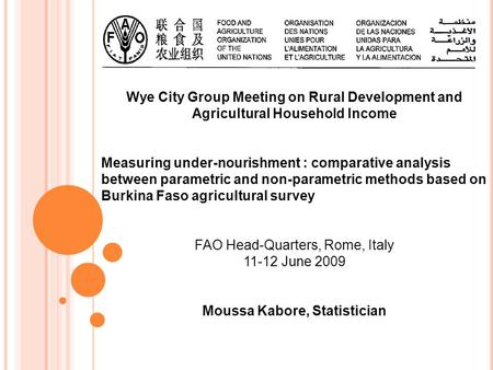 Wye City Group Meeting on Rural Development and Agricultural Household Income Measuring under-nourishment : comparative analysis between parametric and.