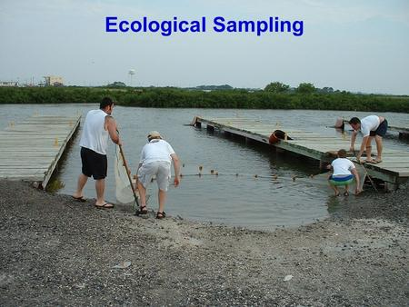 Ecological Sampling. Why Do We Sample? Determine presence and/or abundance Monitor population fluctuations Assess 'ecological damage' Assess quality of.