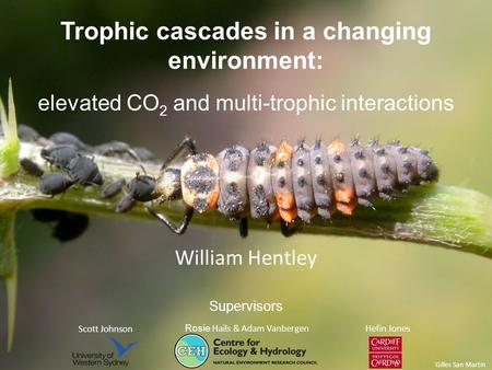 Trophic cascades in a changing environment: elevated CO 2 and multi-trophic interactions Scott Johnson Rosie Hails & Adam Vanbergen Hefin Jones Supervisors.