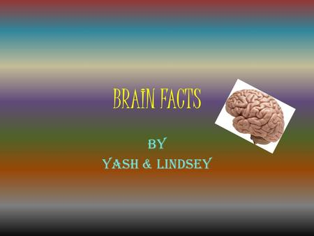 BRAIN FACTS By Yash & Lindsey. Fact Page 1  The adult human brain weighs 3 lbs.  The average human brain is 140 mm wide  The human brain has about.