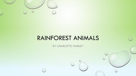 RAINFOREST ANIMALS BY CHARLOTTE WARLEY. INTRODUCTION I wanted to find out about rainforest animals, my project has facts about the rainforest animals.