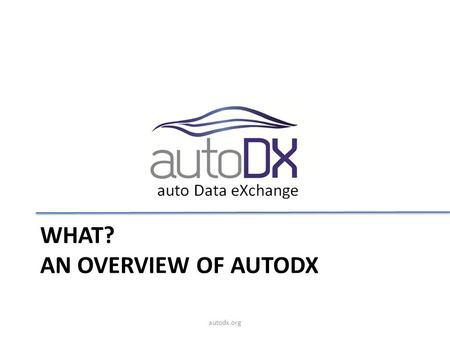 What? An Overview of autodx
