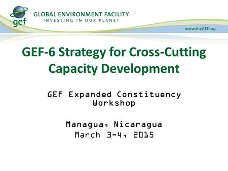 GEF-6 Strategy for Cross-Cutting Capacity Development GEF Expanded Constituency Workshop Managua, Nicaragua March 3-4, 2015.
