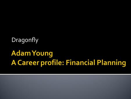 Dragonfly.  Adam Young  Business owner of Dragonfly Planning:  Financial planning business  Creates relationships with clients to help them achieve.