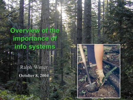Overview of the importance of info systems Ralph Winter October 8, 2004.