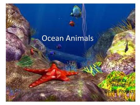 Ocean Animals Jentrey Waugh Unit 3 Project. Directions Shapes in Yellow are required. Shapes in other colors are optional. Enjoy learning about sea animals.