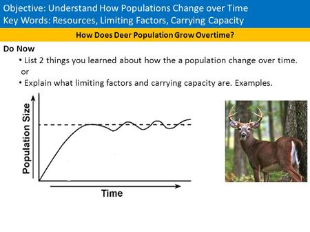 How Does Deer Population Grow Overtime?