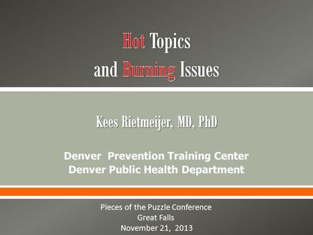 Denver Prevention Training Center Denver Public Health Department Pieces of the Puzzle Conference Great Falls November 21, 2013.