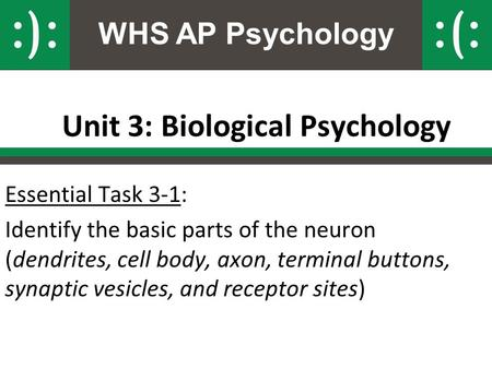 WHS AP Psychology Unit 3: Biological Psychology Essential Task 3-1: Identify the basic parts of the neuron (dendrites, cell body, axon, terminal buttons,