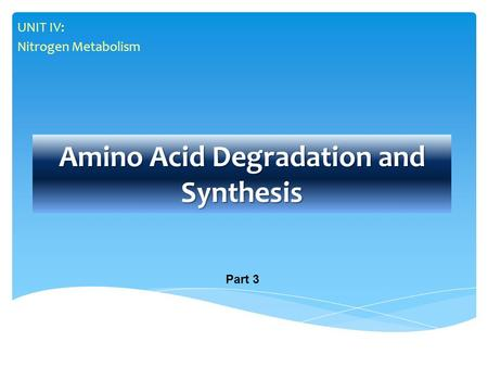 Amino Acid Degradation and Synthesis