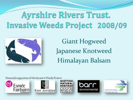 Giant Hogweed Japanese Knotweed Himalayan Balsam Financial supporters of the Invasive Weeds Project.