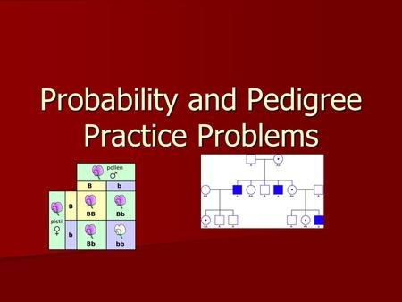 Probability and Pedigree Practice Problems. Practice 1. We will review the questions on pp. 1-4-through-1-5 1. We will review the questions on pp. 1-4-through-1-5.