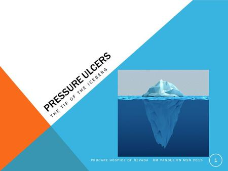 PRESSURE ULCERS THE TIP OF THE ICEBERG PROCARE HOSPICE OF NEVADA RM VANDEE RN MSN 2015 1.