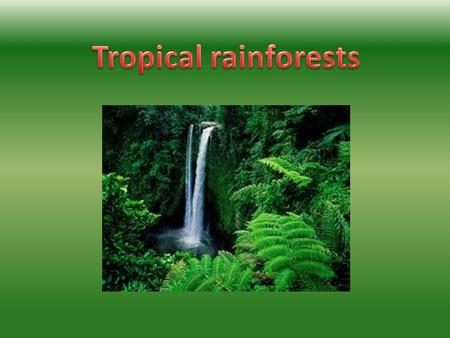 A rainforest is a wet and damp forest which normally by The equator.