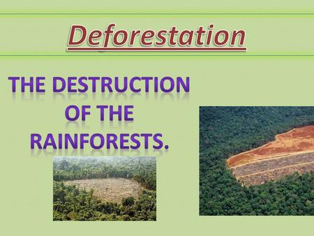 Deforestation is……... When a big percentage of the forest is eradicated, for various reasons. E.g. 1.People needing to provide food and supplies for their.