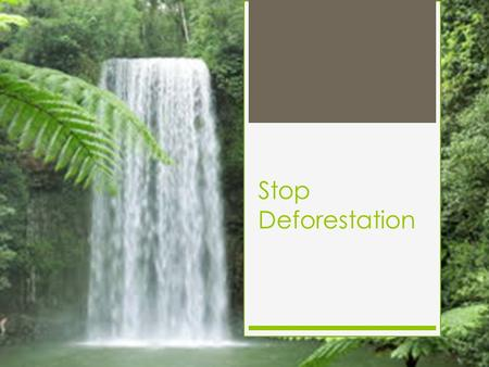 Stop Deforestation. What is deforestation Deforestation is the permanent destruction of forests in order to make the land available for other uses. An.