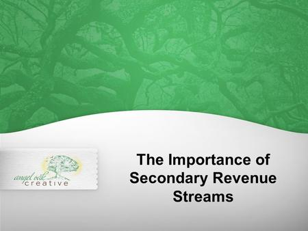 The Importance of Secondary Revenue Streams. Dictionary definition: Revenue derived from goods or services other than a company's primary product offering.