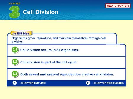 Cell Division CHAPTER the BIG idea CHAPTER OUTLINE Organisms grow, reproduce, and maintain themselves through cell division. Cell division occurs in all.