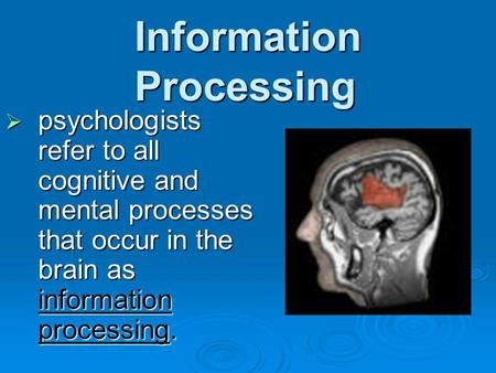 Information Processing  psychologists refer to all cognitive and mental processes that occur in the brain as information processing.