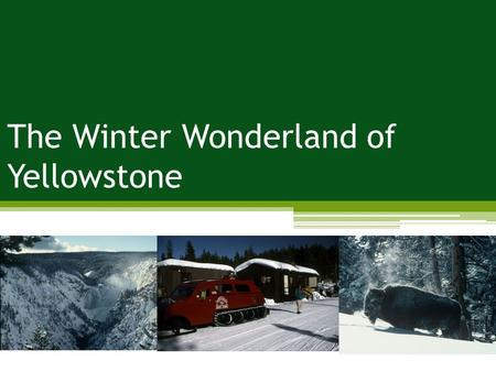 The Winter Wonderland of Yellowstone. Problem: impacts to air; impacts to wildlife; impacts to soundscape Management Strategies: limit use; reduce the.