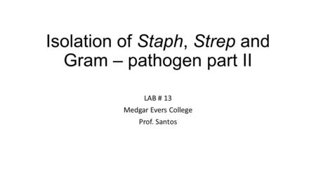 Isolation of Staph, Strep and Gram – pathogen part II LAB # 13 Medgar Evers College Prof. Santos.
