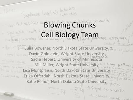 Blowing Chunks Cell Biology Team Julia Bowsher, North Dakota State University David Goldstein, Wright State University Sadie Hebert, University of Minnesota.