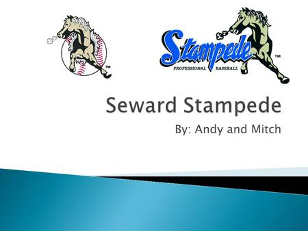 By: Andy and Mitch.  Seward Stampede  Semi-Professional baseball team  Competitive in Class A.