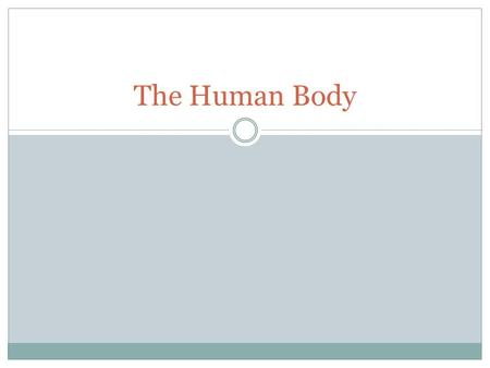 The Human Body. NOTES Human Organ Systems I can identify the systems of the human body. I can identify the function of the human body systems. I can.