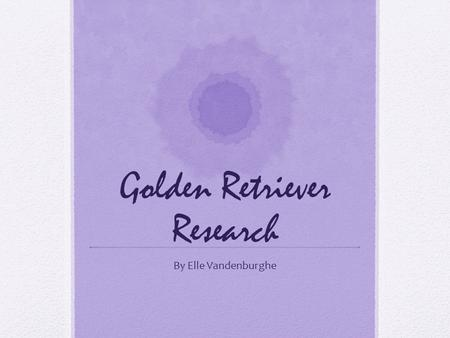 "Golden Retriever Research By Elle Vandenburghe. About the Author I am 9 years old. Some of my work include ""Singing in the Talent Show""."