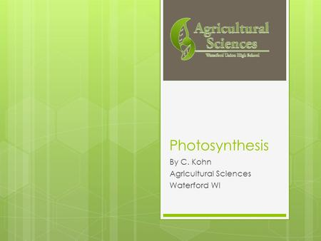 Photosynthesis By C. Kohn Agricultural Sciences Waterford WI.