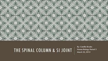 The Spinal Column & SI Joint